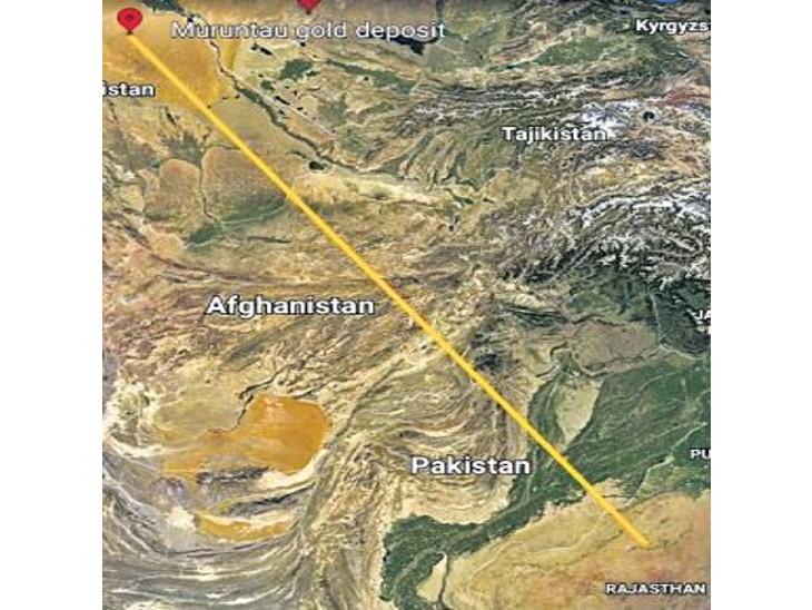 उज्बेकिस्तान से दो महीने में 1857 किलोमीटर की दूरी तय कर एक गिद्ध भोजन की तलाश में जोड़बीड़ कंजर्वेशन रिजर्व में आया है। - Dainik Bhaskar