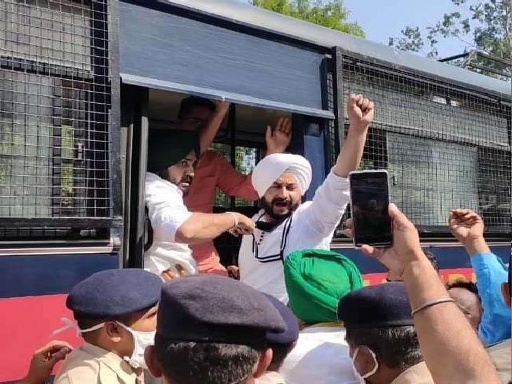 चंडीगढ़ में एमएलए हॉस्टल के बाहर प्रदर्शन कर रहे आप कार्यकर्ताओं को हिरासत में लेती पुलिस। - Dainik Bhaskar