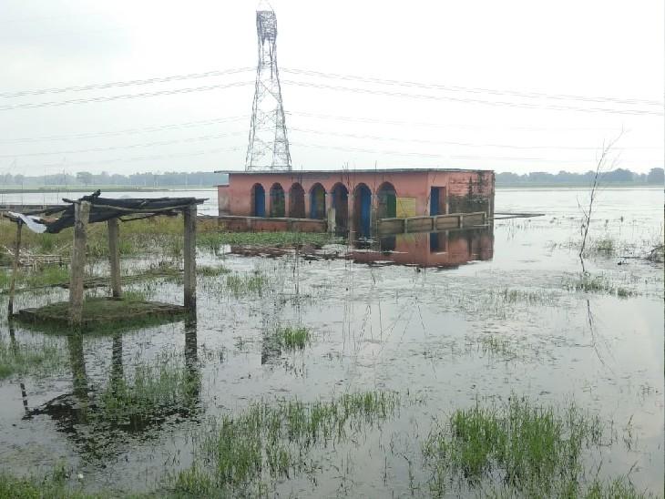 सकरा प्रखंड के मझौलिया पंचायत में बाढ़ और बारिश के पानी में डूबा स्कूल। - Dainik Bhaskar