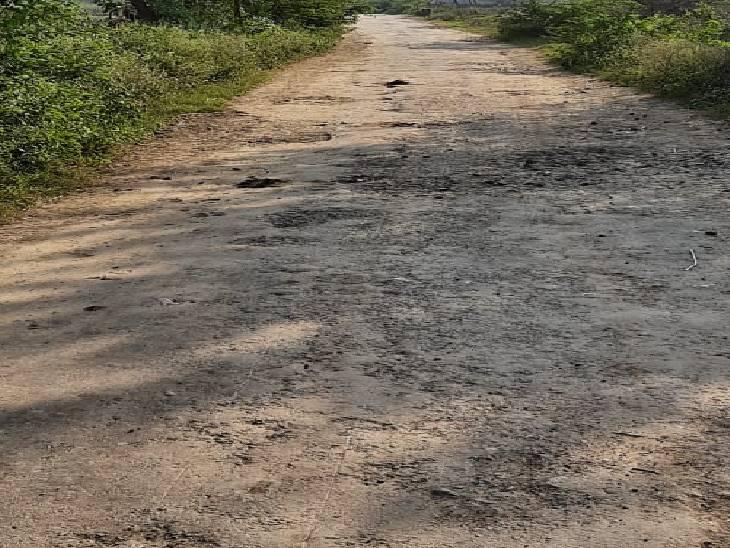 15 किलोमीटर का रास्ता 1 घंटे में होता है पूरा, सरकार का 2 अक्टूबर तक गड्ढे भरने का वादा रहा अधूरा जालौन,Jalaun - Dainik Bhaskar
