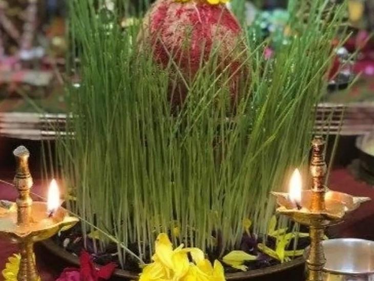 सुख-समृद्धि के प्रतीक होते हैं पूजा में जवारे, अन्न के सम्मान का संदेश है इस विधान में|धर्म,Dharm - Dainik Bhaskar