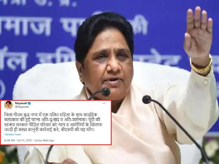 बसपा प्रमुख ने कहा- यूपी की भाजपा सरकार पीड़ित परिवार को न्याय दिलाए, आरोपियों के खिलाफ सख्त कार्रवाई हो|गौतम बुद्ध नगर,Gautambudh Nagar - Dainik Bhaskar
