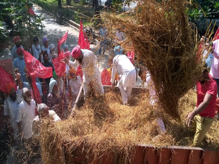 प्रबंधन में सरकारी मदद न मिलने पर किरती किसान यूनियन का प्रदर्शन, कहा- 200 रुपए प्रति क्विंटल के हिसाब से मिले बोनस|बठिंडा,Bathinda - Dainik Bhaskar
