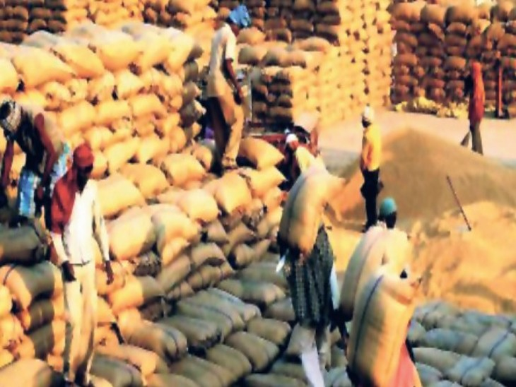 अगले 3 महीने में किसान देंगे बाजार काे 80 हजार कराेड़ का कारोबार|जयपुर,Jaipur - Dainik Bhaskar
