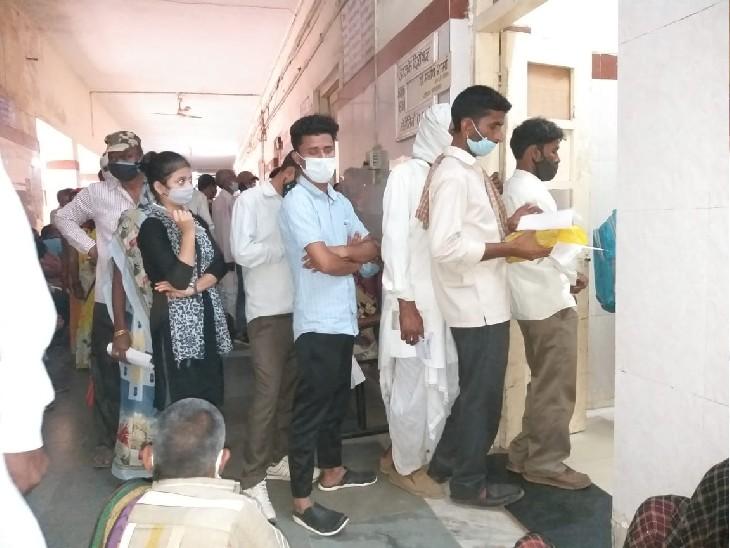 ग्वालियर में डेंगू 583 पर पहुंचा, मरीज बढ़ने से बिगड़ा इलाज का सिस्टम, JAH में लग रहीं लंबी-लंबी कतारें|ग्वालियर,Gwalior - Dainik Bhaskar