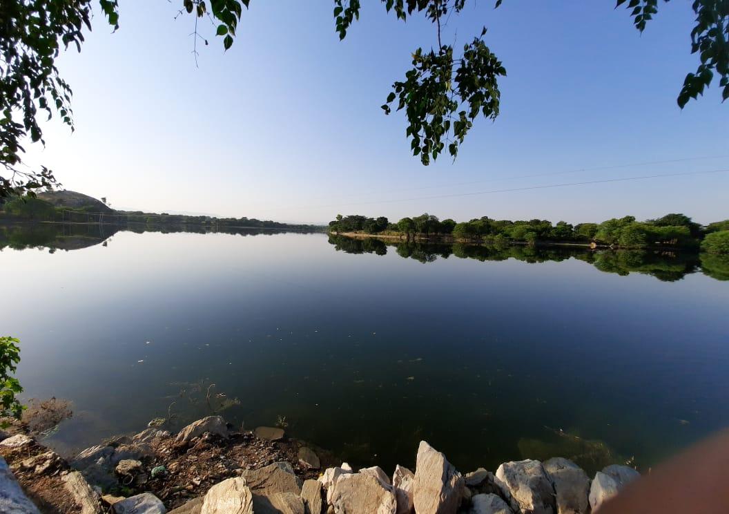 झील, बांध और प्रमुख तलाब रह गए खाली, बाघेरी नाका से नंदसमंद में पानी की आवक जारी,कुंभलगढ़में सबसे कम बारिश राजसमंद,Rajsamand - Dainik Bhaskar