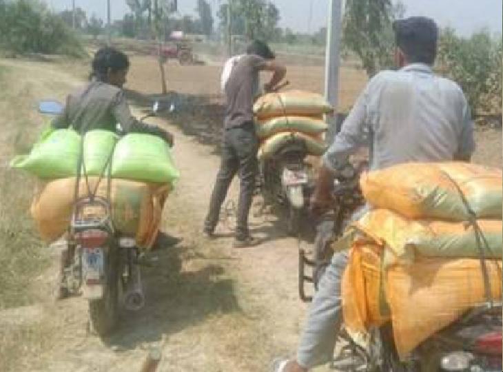 गोदाम प्रभारी को धमकाया और आधा दर्जन गांव के दबंग लूट ले गए 30 बोरी यूरिया और DAP खाद, पुलिस ने की FIR|भिंड,Bhind - Dainik Bhaskar