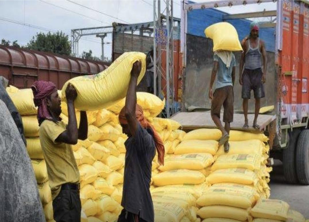 पुलिस ने व्यापारी के गोदाम से जब्त की 560 बोरी, एक को किया गया गिरफ्तार, मामले की जारी है विवेचना|छिंदवाड़ा,Chhindwara - Dainik Bhaskar