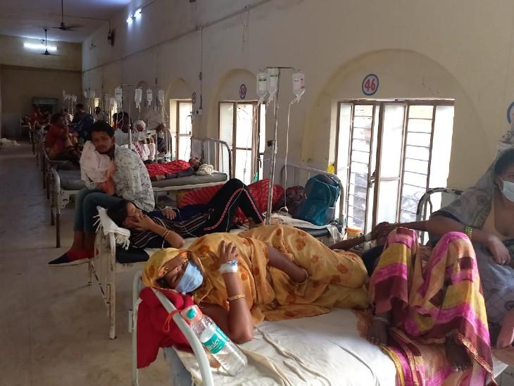 अस्पताल में 200 से ज्यादा बुखार के रोगी भर्ती, 50 से अधिक की प्लेटलेट 60 हजार से नीचे, रिजर्व वार्ड शुरू धौलपुर,Dholpur - Dainik Bhaskar