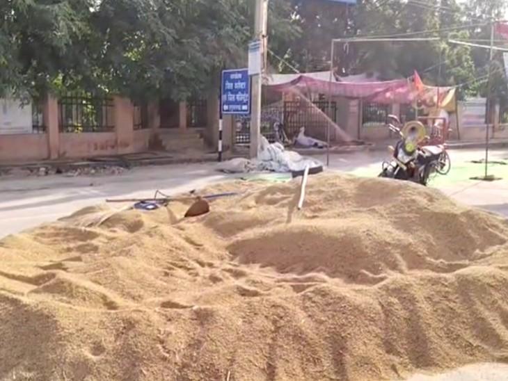 कलेक्ट्रेट के सामने लगाई गई धान के ढेर। - Dainik Bhaskar