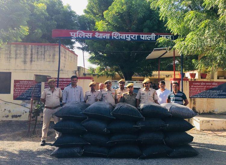 शिवपुरा पुलिस द्वारा पकड़ा गया डोडा-पोस्त। - Dainik Bhaskar