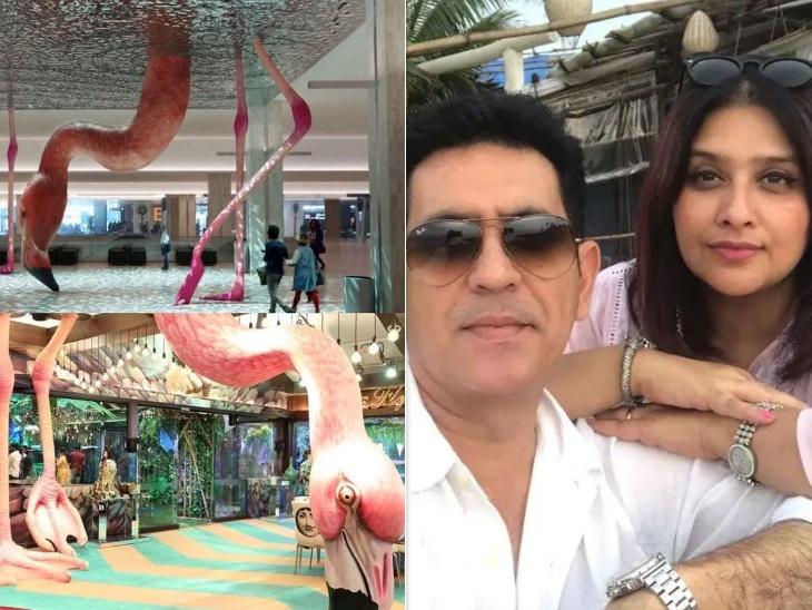 सेट डिजाइन चोरी करने के आरोप पर ओमुंग कुमार की पत्नी वनिता का पलटवार, बोलीं- 'कुछ लोग क्रेडिट लेकर नाम कमाना चाहते हैं'|बॉलीवुड,Bollywood - Dainik Bhaskar