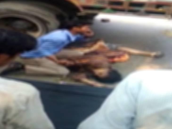 आधे घंटे तक तड़पती रही, लोग देखते रहे और दम तोड़ दिया|शाहजहांपुर,Shahjahanpur - Dainik Bhaskar