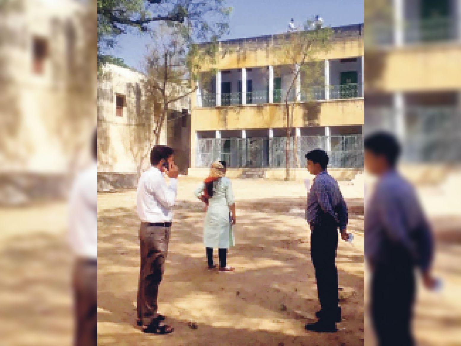 नीम को चट कर रही है हरी लट|नागौर,Nagaur - Dainik Bhaskar