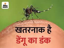 24 घंटे में 5 मरीज मिले, संख्या 503 हुई; 10 मरीजों को एक महीने में दोबारा हुआ डेंगू|भोपाल,Bhopal - Dainik Bhaskar