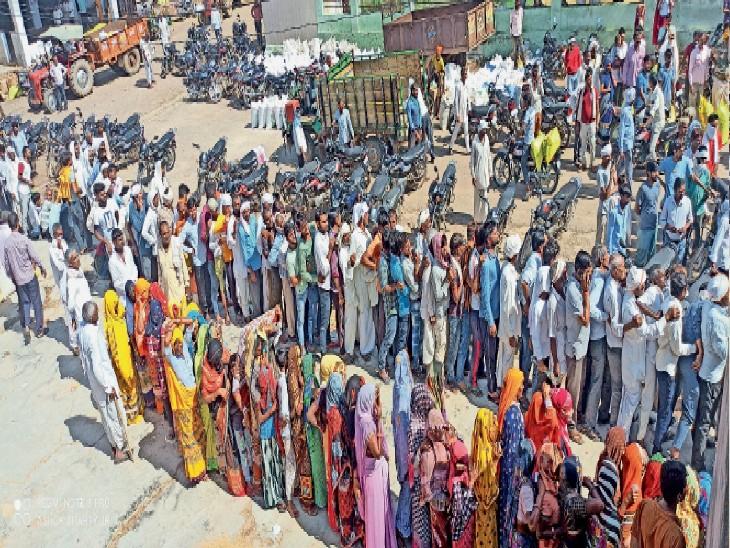 भुसावर में पहली बार आई खाद, 6 घंटे में बांटे 600 कट्टे|भरतपुर,Bharatpur - Dainik Bhaskar