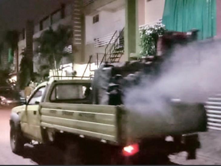 डेंगू 500 पार....10 मरीजों को एक महीने बाद ही दोबारा चपेट में लिया|भोपाल,Bhopal - Dainik Bhaskar