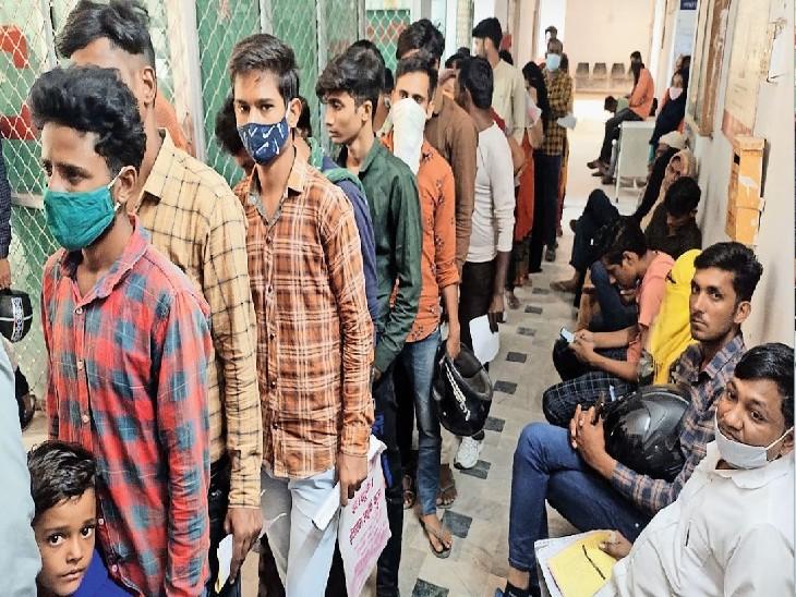 अक्टूबर के 21 दिन में 81 मरीज मिले, जनता के लिए डेंगू काल; विधायकों का आरामकाल|सीकर,Sikar - Dainik Bhaskar
