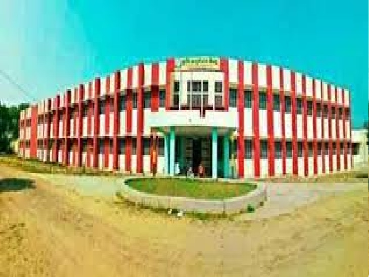 नाैगांवा कृषि काॅलेज काे आवंटित 30 हैक्टेयर जमीन पर आपत्ति, डीटीपी ने कहा-यह नेचुरल कंजरवेशन जाेन में|अलवर,Alwar - Dainik Bhaskar