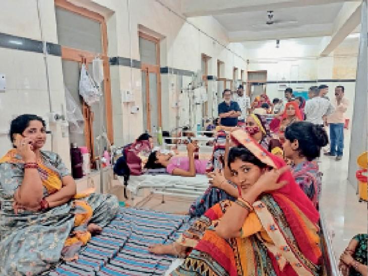 508 का आउटडोर, 140 बेड के बच्चा हॉस्पिटल में 295 भर्ती बीकानेर,Bikaner - Dainik Bhaskar