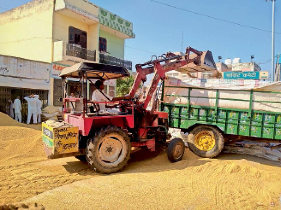 एमएसपी से कम रेट पर धान की खरीद से किसानों में रोष, पंजाब की मंडियों में लेकर जा रहे फसल|कलायत,Kalayat - Dainik Bhaskar