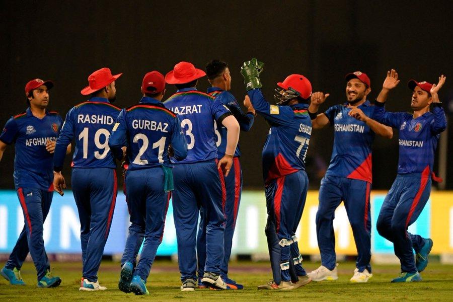 स्कॉटलैंड 60/8, मुजीब उर रहमान ने पहली बार चटकाए टी-20I में 5 विकेट टी-20 वर्ल्ड कप,T20 World Cup - Dainik Bhaskar