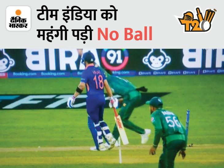 सोशल मीडिया पर फैंस ने कहा- अंपायर सो रहा था; विकेट को लेकर छिड़ी बहस टी-20 वर्ल्ड कप,T20 World Cup - Dainik Bhaskar