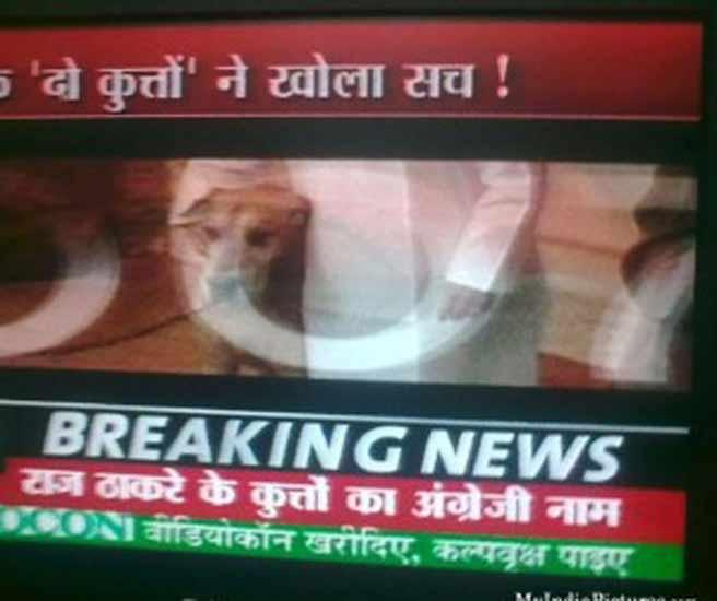 FUNNY NEWS: ह्या बातम्या तुमच्या डोक्याचे करतील दही, हसून हसून व्हाल लोटपोट| - Divya Marathi