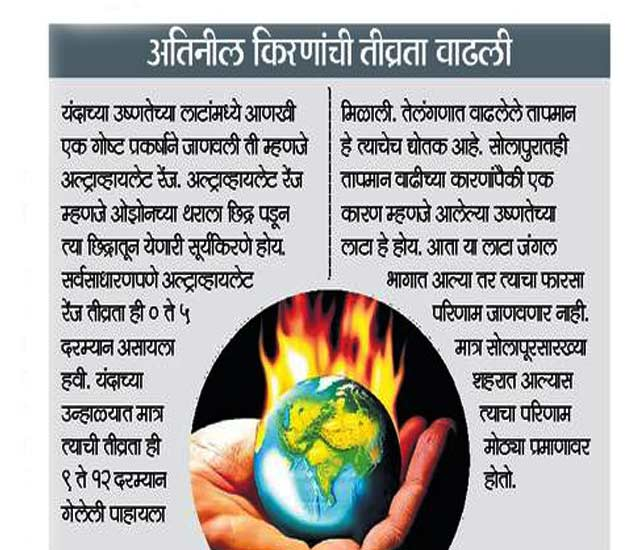 कोट्यवधी झाडे लावा, अन्यथा सोलापूर उष्णतेचं बेट!|सोलापूर,Solapur - Divya Marathi