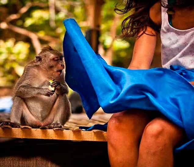 Funny: हे Photo एकदा पाहून कळणार नाहीत,  पाहा आणि Enjoy करा| - Divya Marathi