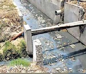गोदावरी नदीला औरंगाबादकर देतात ९० टक्के प्रदूषित पाणी|औरंगाबाद,Aurangabad - Divya Marathi