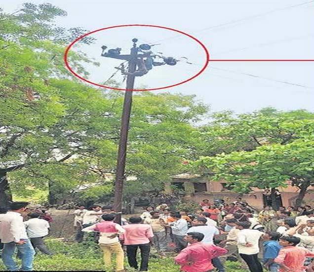 तळीराम झाडावर चढला; तोल जाऊन वीज खांबावर लटकला|जळगाव,Jalgaon - Divya Marathi