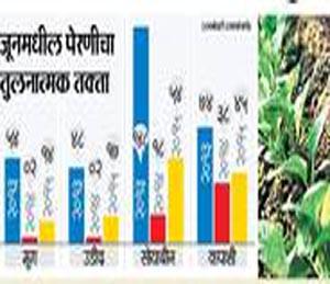 अमरावती विभागावर घोंगावतेय पुन्हा दुबार पेरणीचे संकट|अमरावती,Amravati - Divya Marathi