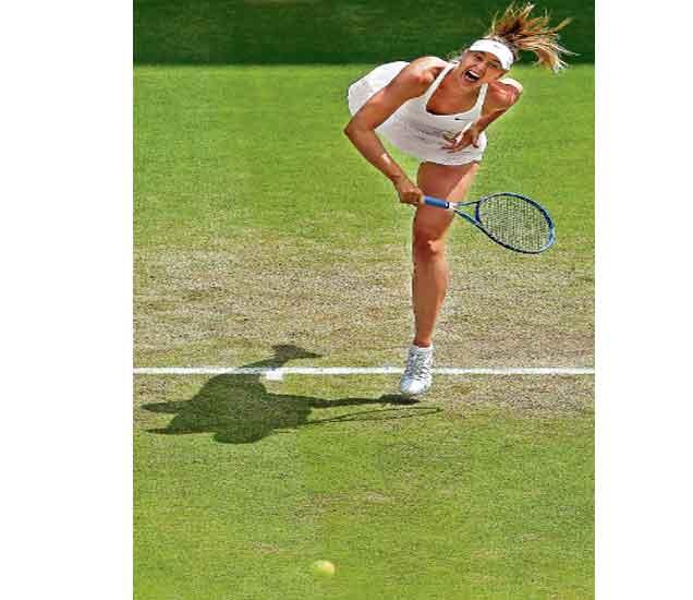 विम्बल्डन टेनिस: शारापाेवाची सेमीफायनलमध्ये धडक; पेस-मार्टिनाची अागेकूच|स्पोर्ट्स,Sports - Divya Marathi