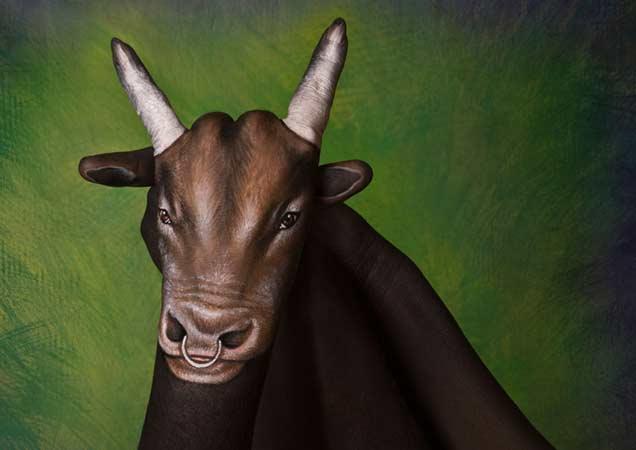 Animals नव्हे Handimals पाहा काही भन्नाट कलाकृती|विदेश,International - Divya Marathi