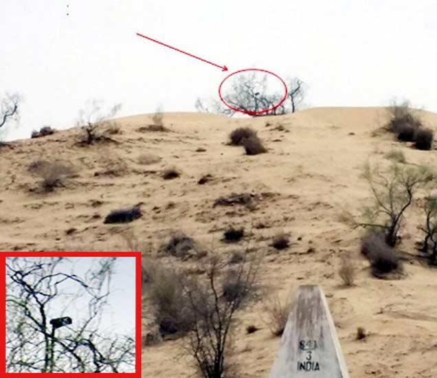 भारत-पाकिस्तान बॉर्डर झुडपांमध्ये पाकिस्तान लष्कराने बसवलेले सीसीटीव्ही कॅमेरा - Divya Marathi