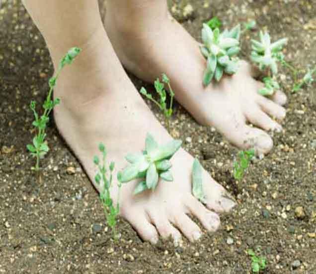 पायांच्या पंज्यांवरुन ओळखा या गोष्टी| - Divya Marathi