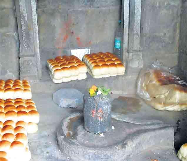 सिंहस्थ कुंभमेळा: भक्तीचा असाही मांडला जाताेय बाजार... नाशिक,Nashik - Divya Marathi