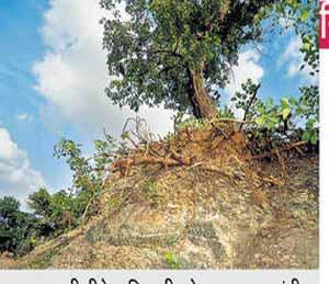 ग्रीन झोनच्या केल्या खदानी, वाळूज एमआयडीसीमधील हरित पट्ट्यात मुरूम चोरी|औरंगाबाद,Aurangabad - Divya Marathi