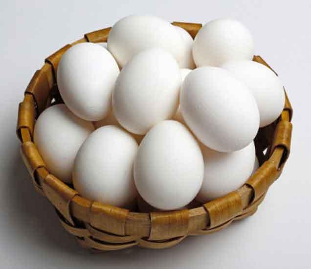 पौष्टीक अंड्याच्या या 9 गोष्टीं कदाचित तुम्हाला माहिती नसाव्यात...|देश,National - Divya Marathi