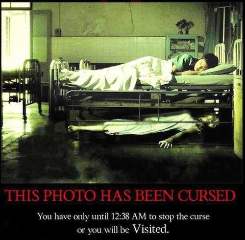 Funny: ... तर पुर्ण होतील तुमच्या सर्व इच्छा, हे आहेत इमोशनली ब्लॅकमेल करणारे 10 फोटो  - Divya Marathi