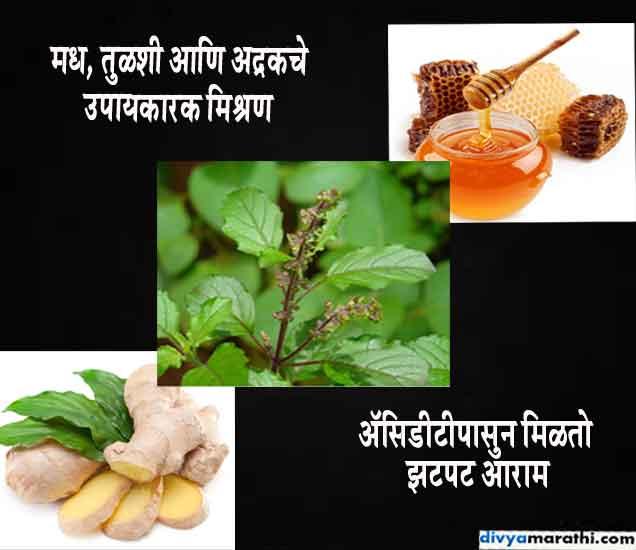 मध आणि तुळशीचे करा असे मिश्रण, एसिडिटीची समस्या होईल दुर...| - Divya Marathi