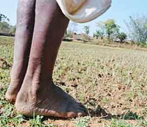 भूसंपादन कठीण, ५ वर्षे लागतील : पनगढिया|देश,National - Divya Marathi