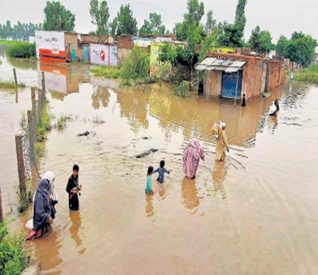 निम्म्या भारतात दुष्काळासारखी स्थिती असली तरी पाकिस्तानमध्ये मात्र पावसाने कहर केला आहे. मुसळधार पावसाने देशातील नद्यांना पूर आला असून ११६ जणांचा मृत्यू झाला आहे. हजारो लोकांवर बेघर होण्याची वेळ आली आहे. पुराचा फटका सुमारे ७ लाख लोकांना बसला. - Divya Marathi