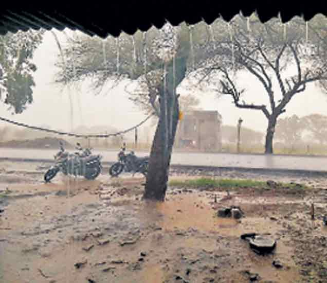 भोकरदन तालुक्यात बुधवारी दिवसभर रिमझिम पाऊस सुरू होता. - Divya Marathi