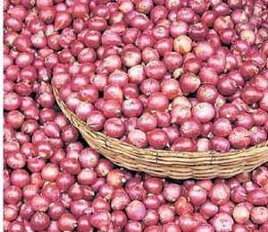 डोळ्यात पाणी, बाजारात कांदा ५० रुपये किलो|औरंगाबाद,Aurangabad - Divya Marathi
