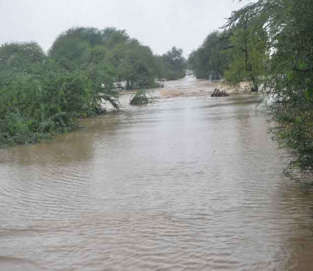 PHOTOS : आज अकोला \'है पानी पानी\'; जनजीवन विस्कळीत|अकोला,Akola - Divya Marathi