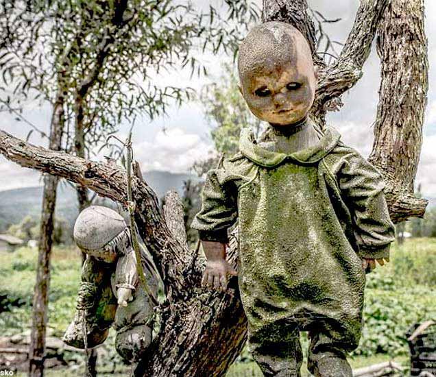 मेक्सिकोमधील भयावह बाहुल्यांचे आयलंड. - Divya Marathi
