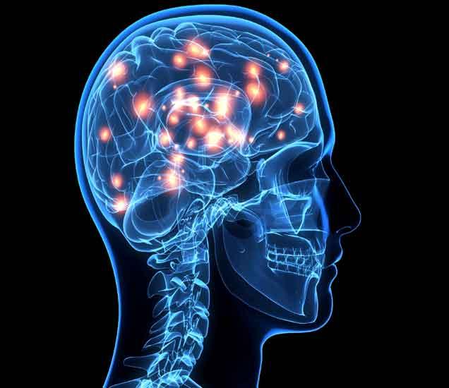 नैसर्गिकरित्या स्मरणशक्ती वाढवण्यासाठी हे 5 पदार्थ करतील मदत....| - Divya Marathi