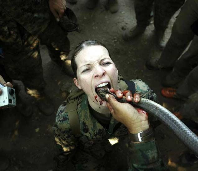 थायलंडच्या चोन बुरी प्रांतातील जंगलामध्ये ट्रेनिंगदरम्यान कोब्रा सापाचे रक्त पिणारी अमेरिकेची सैनिक. - Divya Marathi